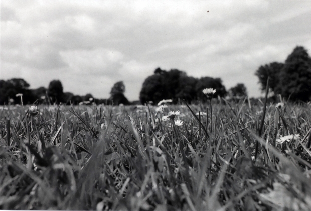 Fields Ilford HP4 500