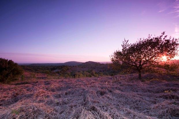 Caerphilly Mountain Sunset