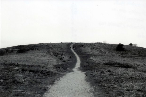 Mountain Path 50mm Fomapan Classic 100 f4 125th sec