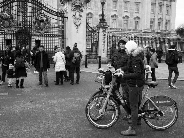 Bikes At Buckingham.jpg