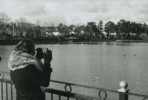 Roath Park 4 50mm Fomapan Classic 100 f8 250th