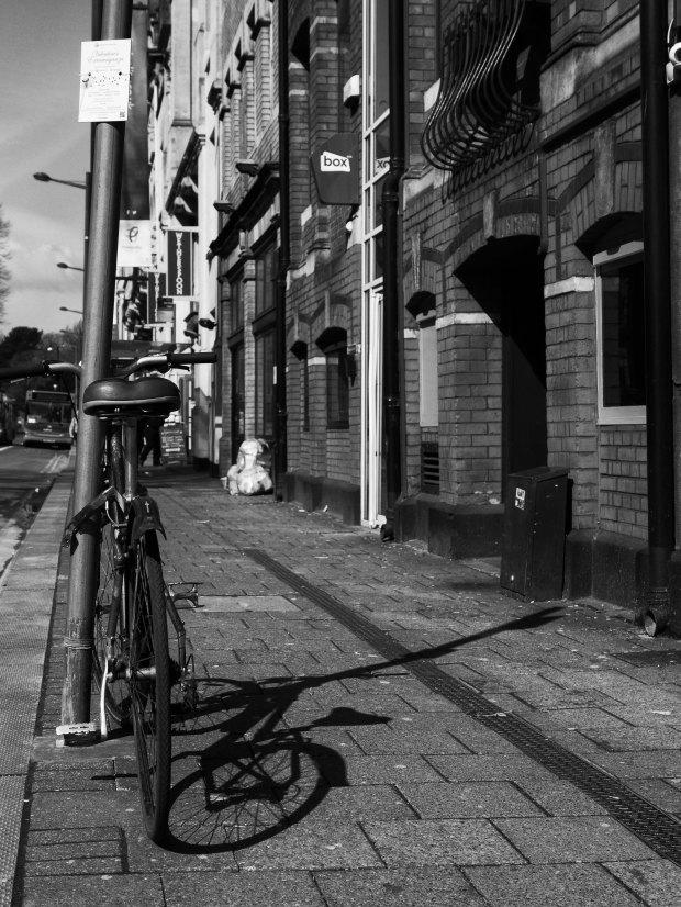 Bicycle Shadow.jpg