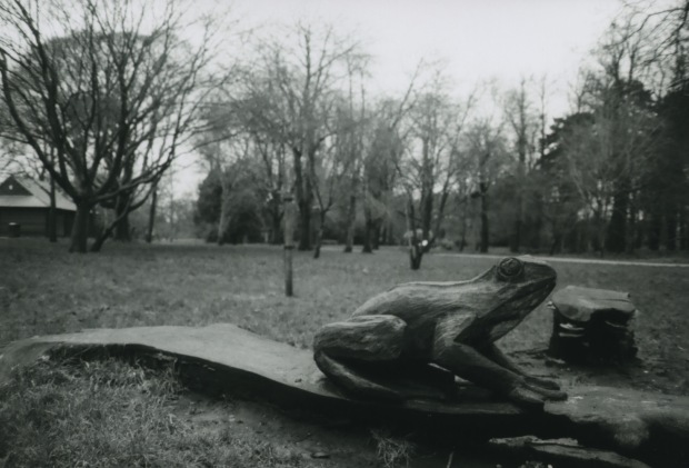 Frog 28mm Fomapan Classic 100 f2.8 125th.jpg