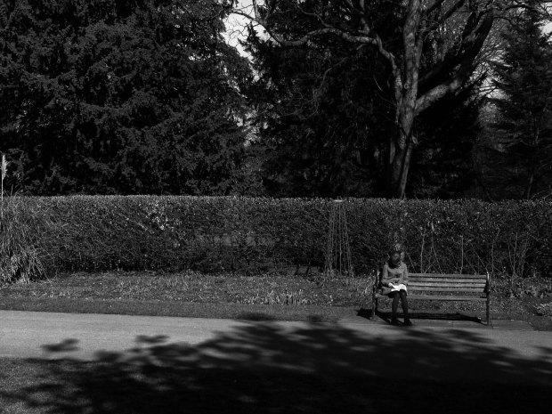 The Lone Reader.jpg