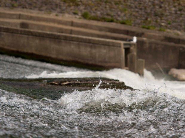Water 3 135mm.jpg
