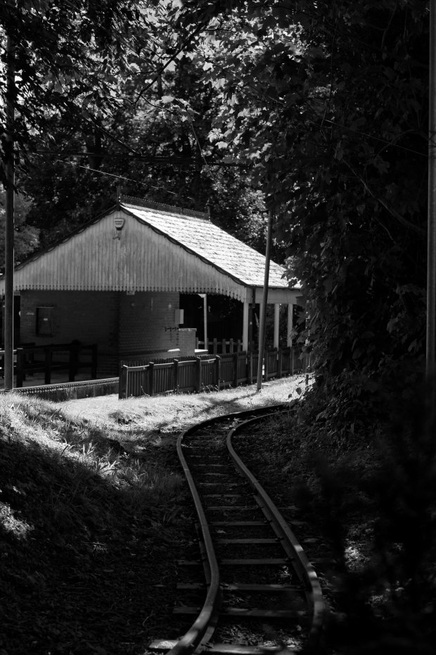 Model Railway.jpg