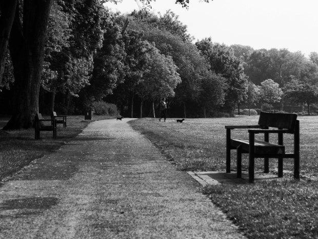 Park Pathway 50mm OM.jpg