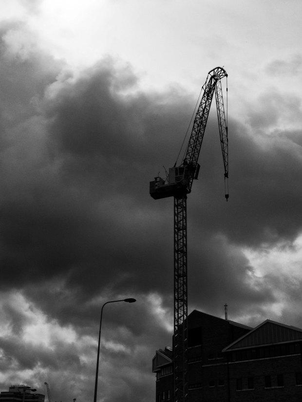 Dark Crane.jpg
