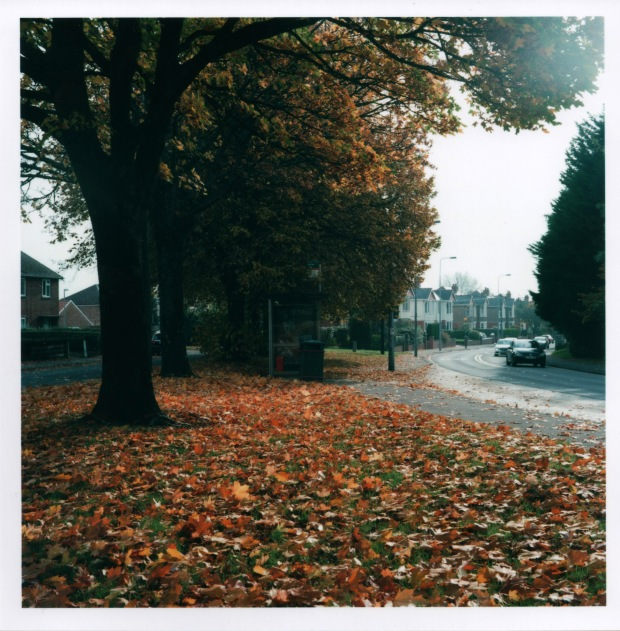 Autumn f16 125th sec.jpg