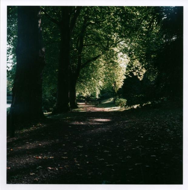 Autumn Path 2 f8 125th sec.jpg
