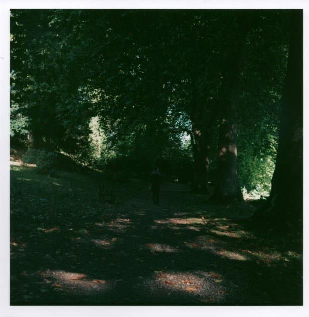 Autumn Path f8 125th sec.jpg