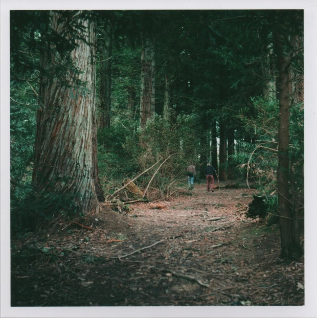 Woods 8 f.3.5 125th.jpg