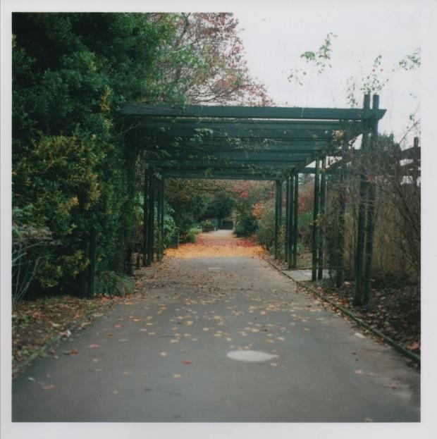 Path  f2.8 125th.jpg